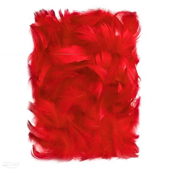 Piórka 5-12cm 10g czerwone