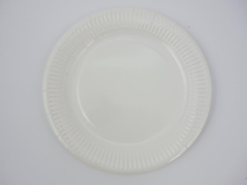 Talerz papierowy biały 23cm A`100